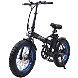ECOTRIC Electric Fat Tire Bicycle Folding Bike 12.5Ah 36V 500W Lithium...